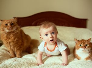 Bebekler ve Evcil Hayvanlar Bir Arada Yaşayabilir mi ?